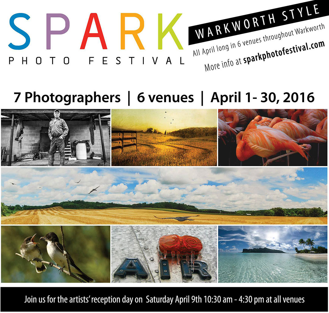 Spark Warkworth 2016
